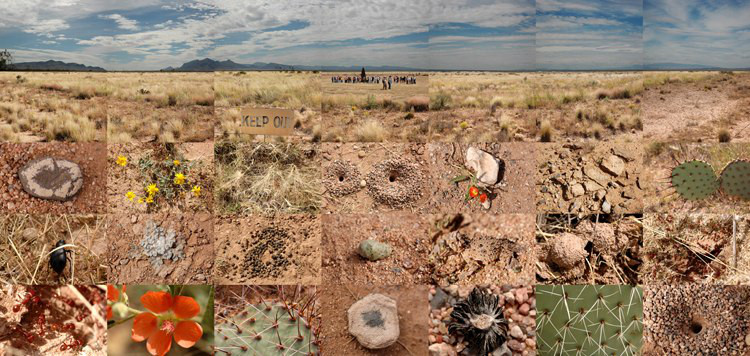 trinity site_new mexico_21 in x 44 in _2008