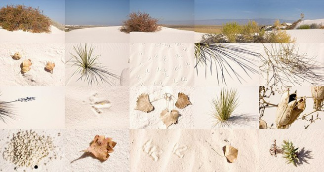 white sands_new mexico_21 in x 40 in_2007